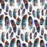 Watercolor feather pattern Royalty Free Stock Image