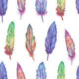 Watercolor feather seamless pattern Stock Images