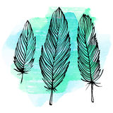 Watercolor feather set Stock Photography