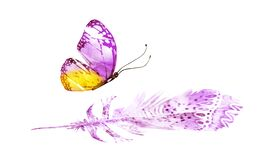 Watercolor feathers with butterfly, isolated
