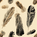 Watercolor feathers seamless Royalty Free Stock Photos