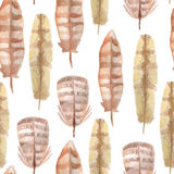 Watercolor feathers seamless pattern. On white background Stock Image