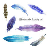Watercolor feathers set. In blue and violet colors. It can be used like design elements for different projects Royalty Free Stock Images