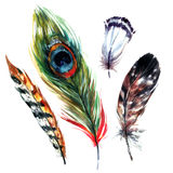 Watercolor Feathers Set. Hand drawn illustration in boho style. Rustic design elements for wedding invitation, greeting card and t-shirt. Isolated on white royalty free illustration