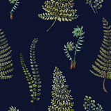 Watercolor fern pattern. Beautiful pattern with nice watercolor fern leaves Stock Photo