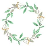 Watercolor Festive Winter Christmas Wreath Berry Garland Royalty Free Stock Image
