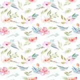 Watercolor field carnations and green branches seamless pattern. Hand drawn on a white background Royalty Free Stock Photo
