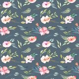 Watercolor field carnations and green branches seamless pattern. Hand drawn on a dark blue background Royalty Free Stock Image