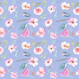 Watercolor field carnations, roses and small field green branches seamless pattern. Hand drawn isolated on a blue background Stock Photography