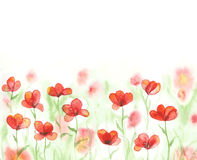 Watercolor field with red poppies. Banner with flowers. Vector background Royalty Free Stock Photography