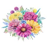 Watercolor fiesta flowers. Compositions. Spring or summer decoration floral bohemian design Stock Images