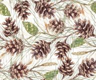 Watercolor fir cone pattern. Beautiful seamless pattern with watercolor fir cones Stock Photography