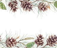 Watercolor fir cone pattern. Beautiful seamless pattern with watercolor fir cones Royalty Free Stock Photo