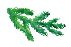 Watercolor fir tree branch. Fir branch isolated on white background. Hand drawn watercolor illustration. Christmas tree. New year and Xmas Holidays design Royalty Free Stock Images