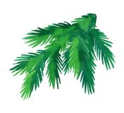 Watercolor fir tree branch. Fir branch isolated on white background. Hand drawn watercolor illustration. Christmas tree. New year and Xmas Holidays design Royalty Free Stock Image