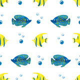 Watercolor fish background. Blue and yellow watercolor fish isolated on white. Marine seamless pattern. Undewater life, coral reef Royalty Free Stock Photos