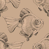 Watercolor fish. Hand painted drawing of outline isolated on black background Royalty Free Stock Photography
