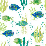 Watercolor fish seamless pattern. Royalty Free Stock Photos