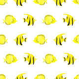Watercolor fish seamless pattern. Yellow tropical fish. On white background. Bright vector wallpaper Royalty Free Stock Photos