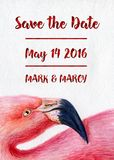 Watercolor flamingo pink hand painted illustration bird profile portrait art print save the date Red Foil Text card. Can be used as invitation card for wedding Stock Photography