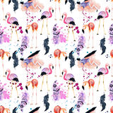 Watercolor flamingo seamless pattern isolated on the white background Stock Image