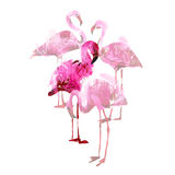 Watercolor flamingos Royalty Free Stock Photography