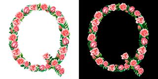 Watercolor floral alphabet of roses, Monogram, capital letter Q isolated on black and white background. royalty free stock image
