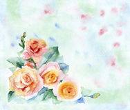 Watercolor floral arrangement. Watercolor painting roses. Floral arrangement red-yellow flowers on a green blurred background Royalty Free Stock Images