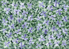 Watercolor floral background. Watercolor painting. Floral background with lilac flowers and green leaves Royalty Free Stock Photo