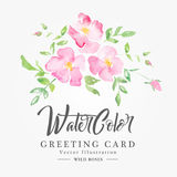 Watercolor floral background with pink poppies Stock Photos