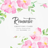 Watercolor floral background with pink wild roses Royalty Free Stock Images