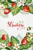 Watercolor floral background with strawberries. Summer card. Frame with watercolor strawberries. Hand painted background. stock illustration