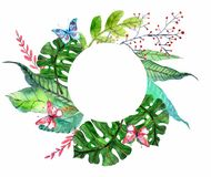 Watercolor Floral background with Tropical orchid flowers, leave royalty free illustration