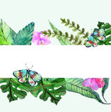 Watercolor Floral background with Tropical orchid flowers, leave. S and butterflies for beautiful natural design Royalty Free Stock Image