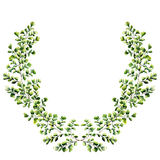 Watercolor floral border with maidenhair fern leaves. Hand painted floral wreath with branches, leaves of fern isolated on white. Background. For design or Royalty Free Stock Images