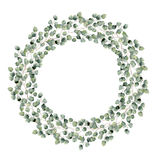 Watercolor floral border with silver dollar eucalyptus leaves. Hand painted floral wreath with branches, round leaves. Isolated on white background. For design Stock Photos