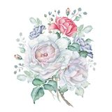 Watercolor Floral Bouquet with Blue and Pink Roses. Hand drawn watercolor floral bouquet isolated on white background. White, blue and pink roses. Great for royalty free illustration