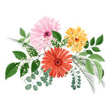 Watercolor floral bouquet with gerberas and leaves Stock Image