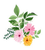 Watercolor floral bouquet with gerberas and leaves Royalty Free Stock Photography