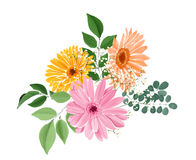 Watercolor floral bouquet with gerberas and leaves Stock Images