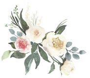 Watercolor floral bouquet with roses and eucalyptus. Watercolor floral bouquet composition with light roses and eucalyptus stock image