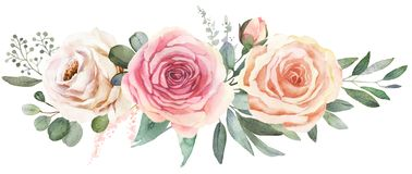 Watercolor floral bouquet with roses and eucalyptus. Watercolor floral bouquet composition with roses and eucalyptus stock illustration
