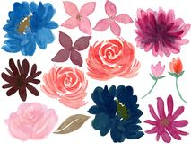 Watercolor Floral burgundy navy deep color and sweet element set vector illustration