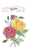 Watercolor floral card. Stock Photos