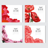 Watercolor floral cards set Stock Image