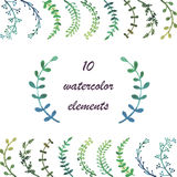 Watercolor  floral collection. Colorful floral collection with leaves and flowers, drawing watercolor. Spring or summer design for invitation, wedding or Royalty Free Stock Image
