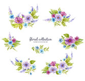 Watercolor floral collection with flower arrangements of flowers, leaves, branches and flower buds. Stock Photos