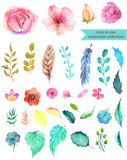 Watercolor floral collection. Mint and rose for beautiful design Royalty Free Stock Photography