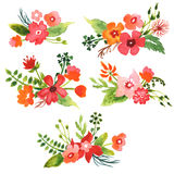 Watercolor Floral Collection Royalty Free Stock Photo