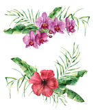 Watercolor floral composition with exotic flowers and leaves. Hand painted bouquet with hibiscus and orchid, palm leaves. And branches  on white background Royalty Free Stock Photography